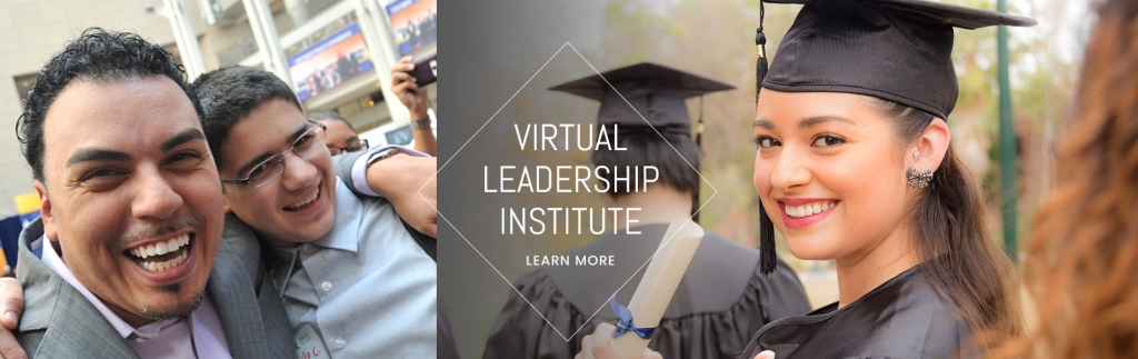 Virtual Leadership Institute